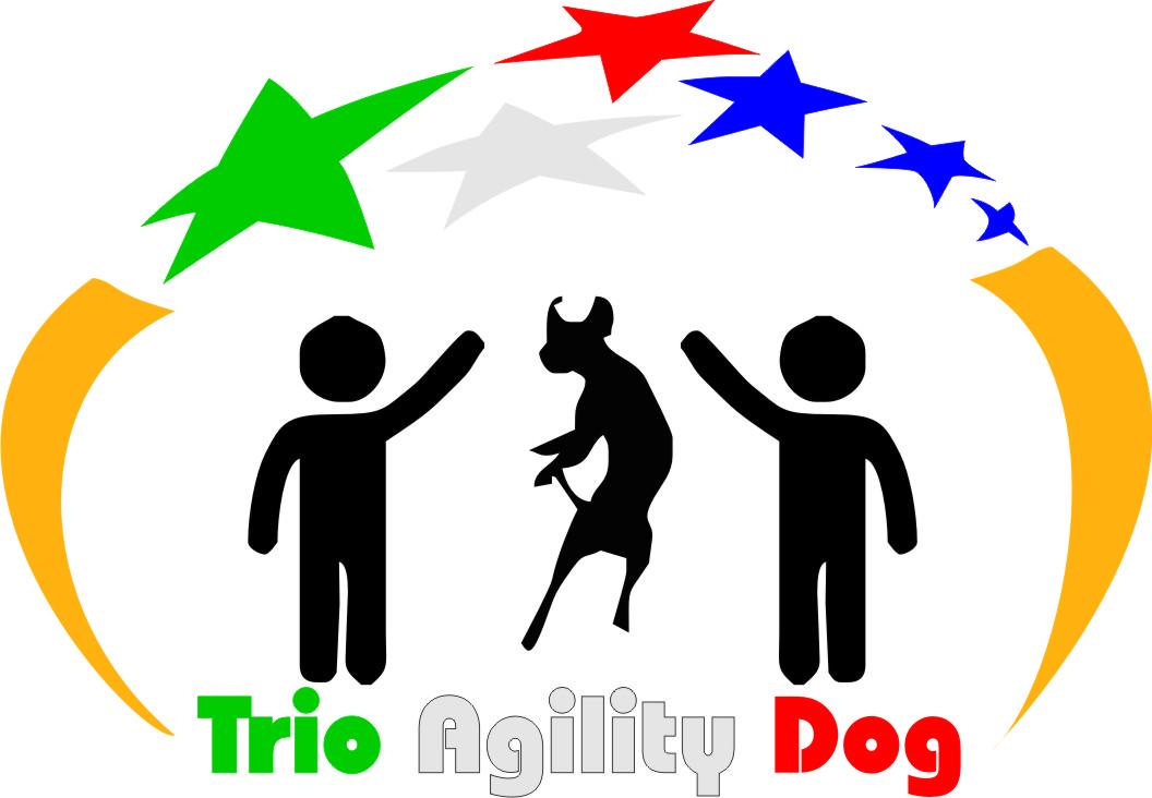 Trio Agility Dog